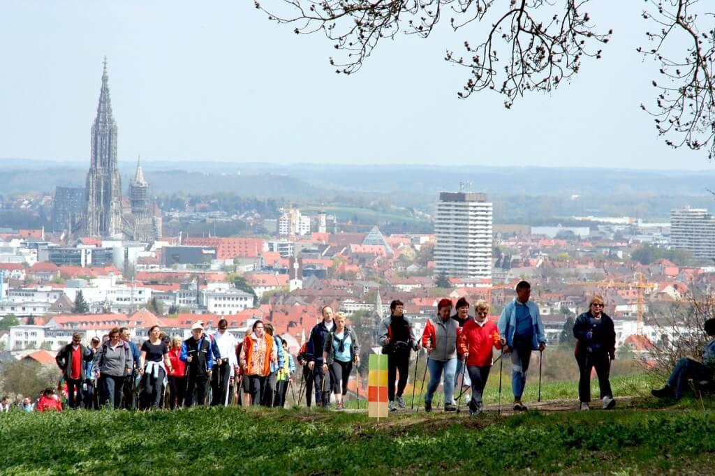 Grupowe wyjście z kijami do Nordic Walking.