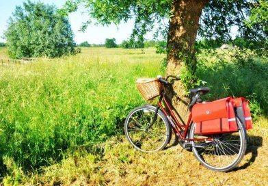 Cechą charakterystyczną roweru damskiego jest przede wszystkim obniżona rama.